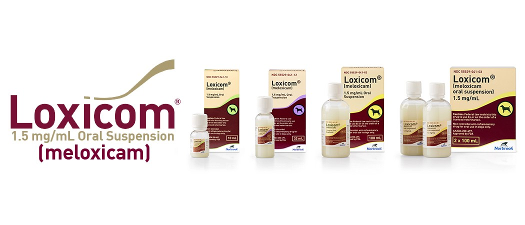 Loxicom Oral Suspension for dogs 100ml, image