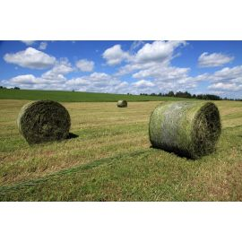 Haylage NutriManager, image
