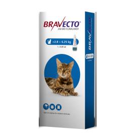Bravecto Spot Medium Cat (2.8-6.25KG) 250mg, image